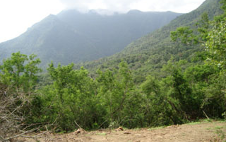 Foto de terreno habitacional en venta en  , las margaritas, santiago, nuevo león, 1140487 No. 05