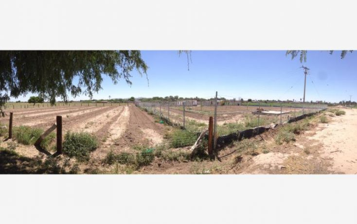 Foto de terreno habitacional en venta en, las margaritas, torreón, coahuila de zaragoza, 2010842 no 03