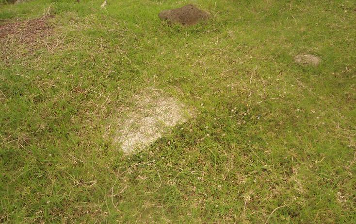 Foto de terreno habitacional en venta en  , las margaritas, xalapa, veracruz de ignacio de la llave, 1525153 No. 11