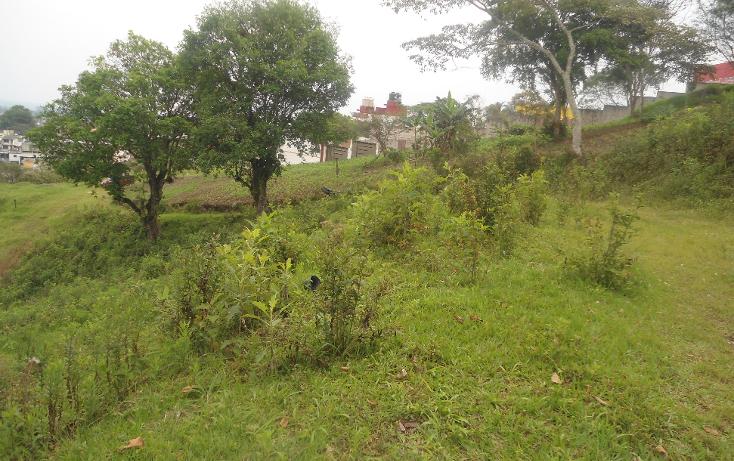 Foto de terreno habitacional en venta en  , las margaritas, xalapa, veracruz de ignacio de la llave, 1812420 No. 03