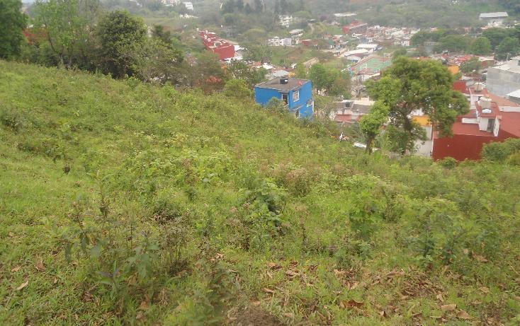 Foto de terreno habitacional en venta en  , las margaritas, xalapa, veracruz de ignacio de la llave, 1812420 No. 06