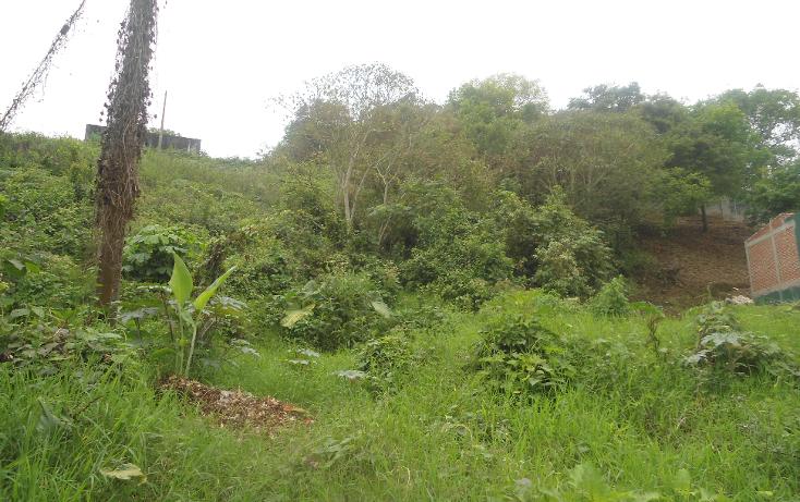 Foto de terreno habitacional en venta en  , las margaritas, xalapa, veracruz de ignacio de la llave, 1813510 No. 01