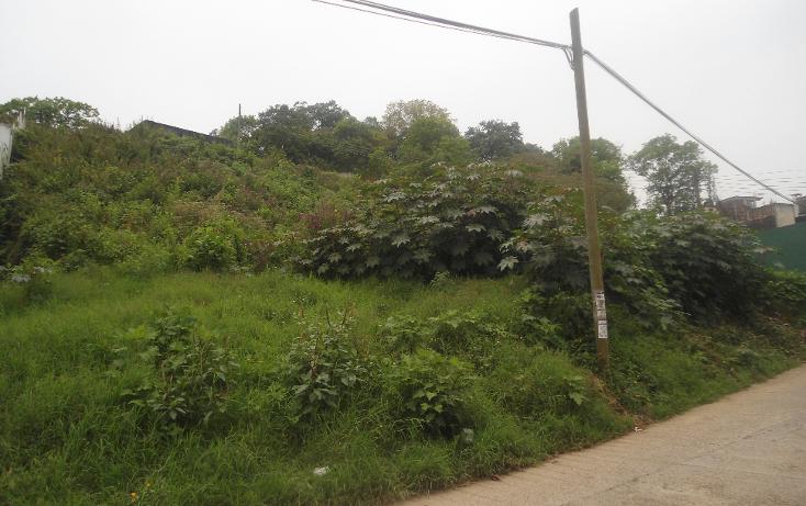 Foto de terreno habitacional en venta en  , las margaritas, xalapa, veracruz de ignacio de la llave, 1813510 No. 03