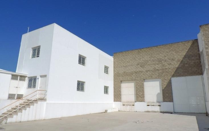 Foto de nave industrial en renta en  , las mojoneras, puerto vallarta, jalisco, 1440713 No. 01