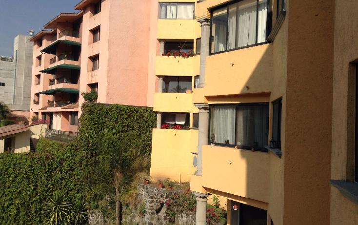 Foto de departamento en renta en  , las palmas, cuernavaca, morelos, 1196757 No. 18