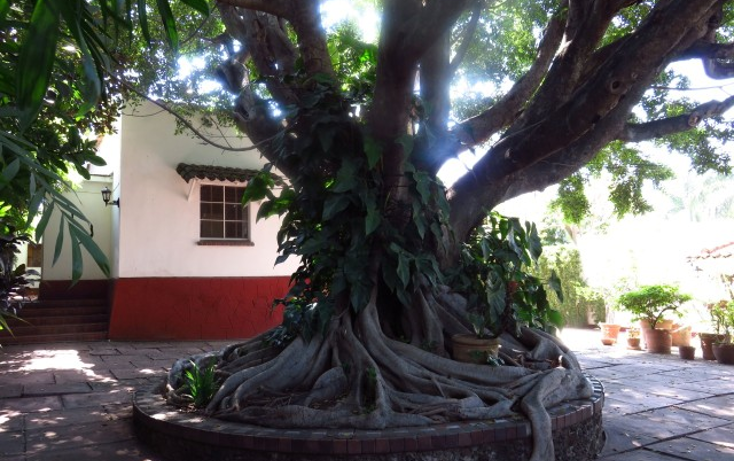 Foto de casa en renta en  , las palmas, cuernavaca, morelos, 1747108 No. 16