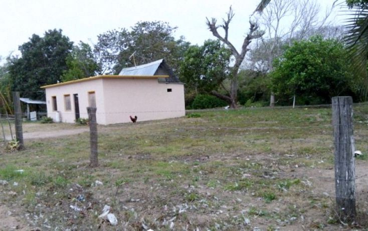Foto de terreno habitacional en venta en, las palmas, medellín, veracruz, 1068755 no 01