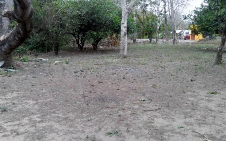 Foto de terreno habitacional en venta en, las palmas, medellín, veracruz, 1068755 no 02