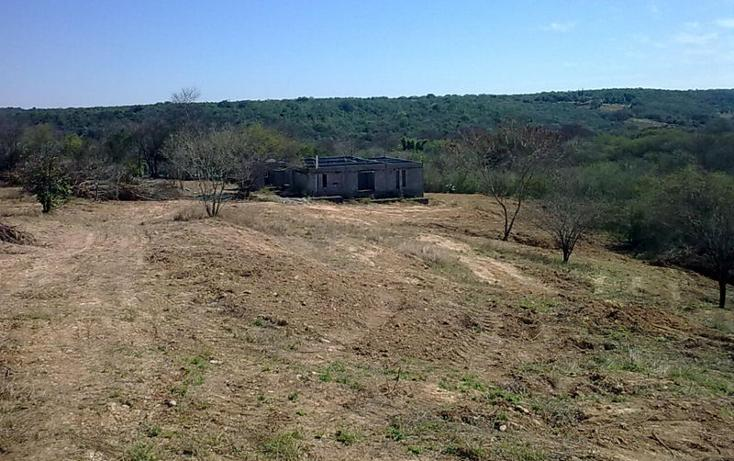 Foto de terreno habitacional en venta en  , las palmas, montemorelos, nuevo león, 1555518 No. 03