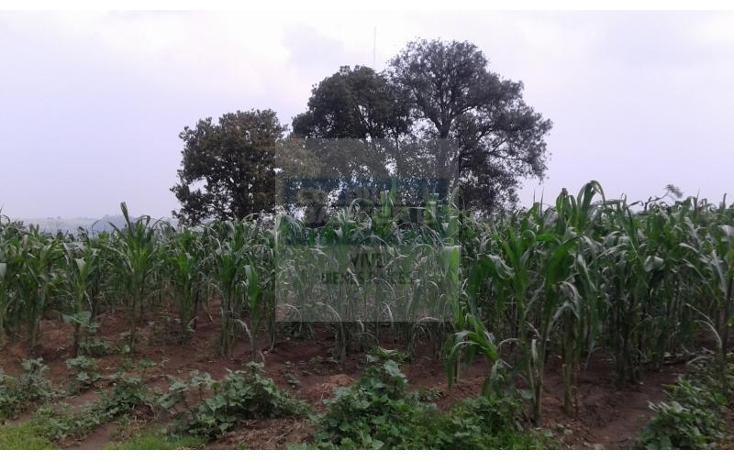 Foto de terreno habitacional en venta en  1, la palma tenango, tenango del aire, méxico, 1014387 No. 02