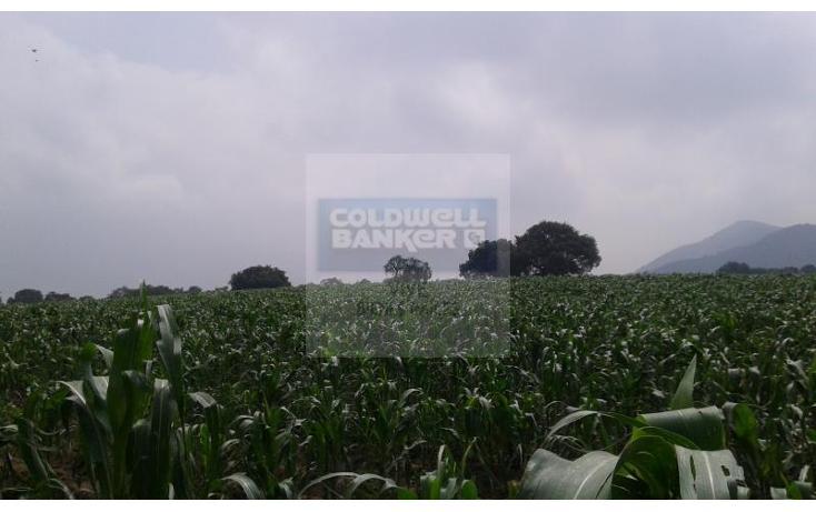 Foto de terreno habitacional en venta en  1, la palma tenango, tenango del aire, méxico, 1014387 No. 04