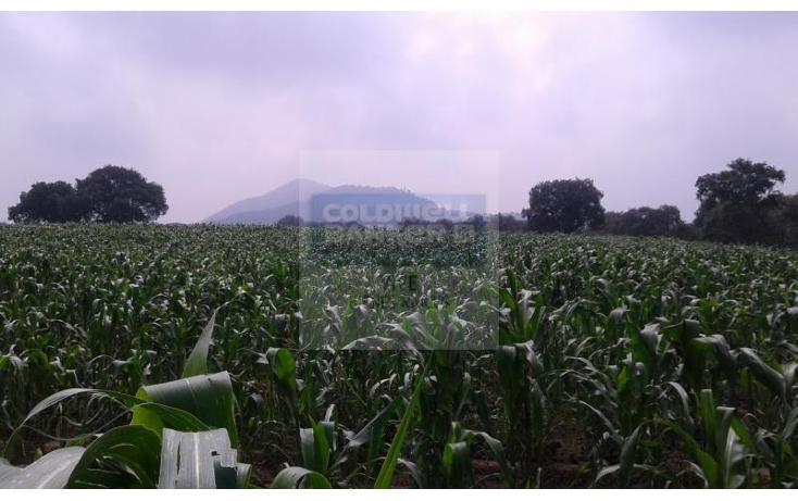 Foto de terreno habitacional en venta en  1, la palma tenango, tenango del aire, méxico, 1014387 No. 05