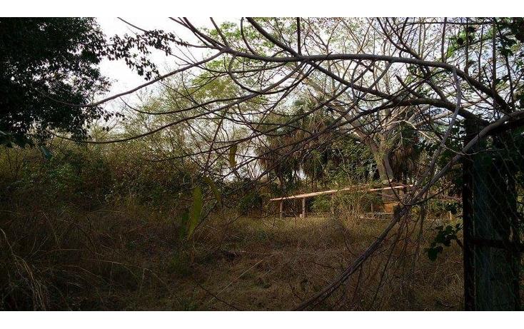 Foto de terreno habitacional en venta en  , las palmas, puerto vallarta, jalisco, 1474523 No. 04