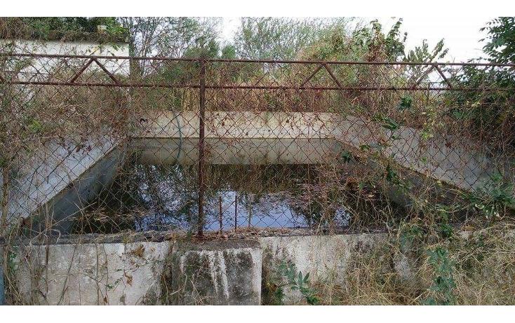 Foto de terreno habitacional en venta en  , las palmas, puerto vallarta, jalisco, 1474523 No. 06