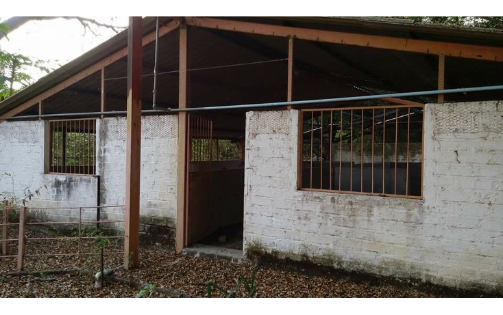 Foto de terreno habitacional en venta en  , las palmas, puerto vallarta, jalisco, 1474523 No. 10