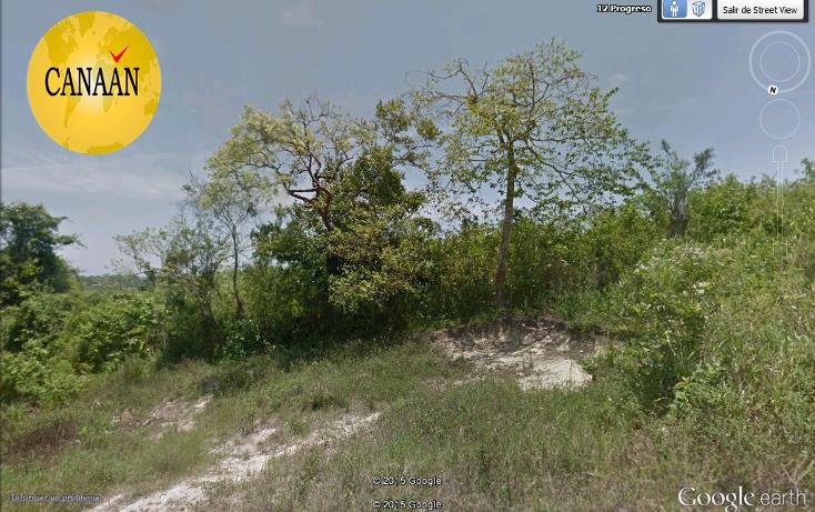 Foto de terreno habitacional en venta en  , las palmas, tuxpan, veracruz de ignacio de la llave, 1289321 No. 02