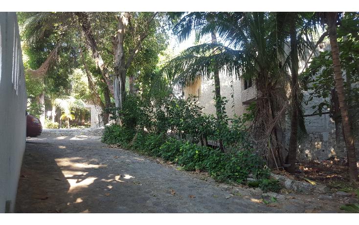 Foto de terreno habitacional en venta en  , las playas, acapulco de juárez, guerrero, 1053625 No. 05
