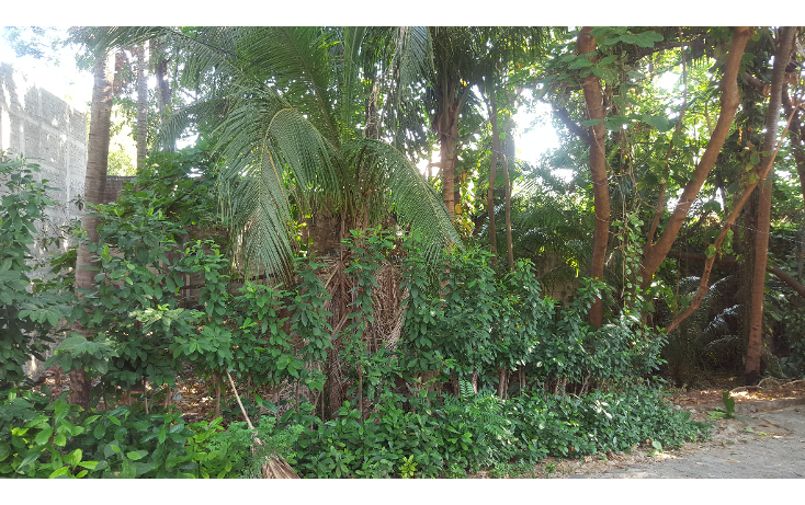 Foto de terreno habitacional en venta en  , las playas, acapulco de juárez, guerrero, 1053625 No. 07