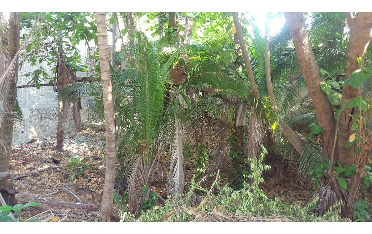 Foto de terreno habitacional en venta en  , las playas, acapulco de juárez, guerrero, 1053625 No. 08