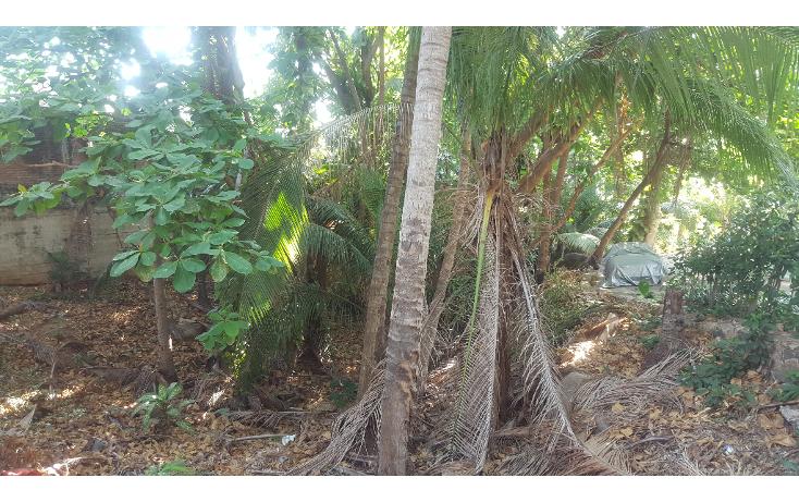 Foto de terreno habitacional en venta en  , las playas, acapulco de juárez, guerrero, 1053625 No. 09