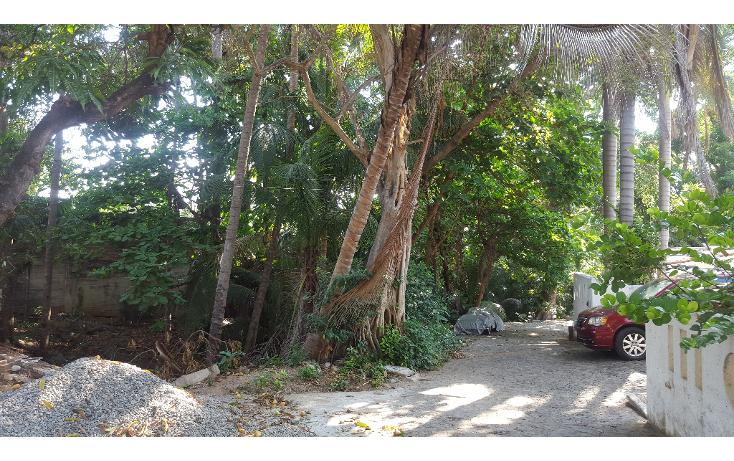 Foto de terreno habitacional en venta en  , las playas, acapulco de juárez, guerrero, 1053625 No. 10