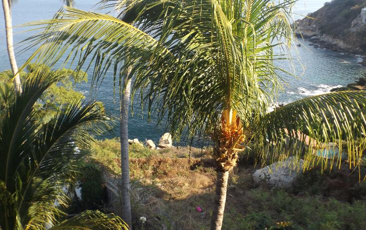 Foto de terreno habitacional en venta en  , las playas, acapulco de juárez, guerrero, 1290899 No. 05