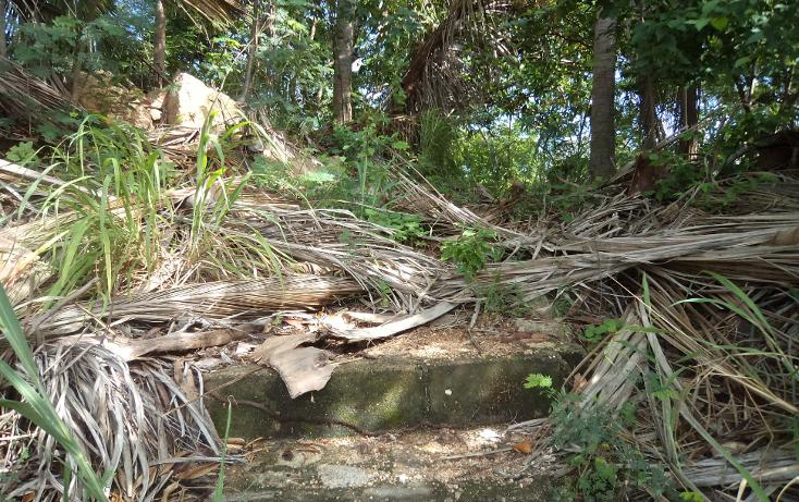 Foto de terreno habitacional en venta en  , las playas, acapulco de juárez, guerrero, 1331601 No. 07