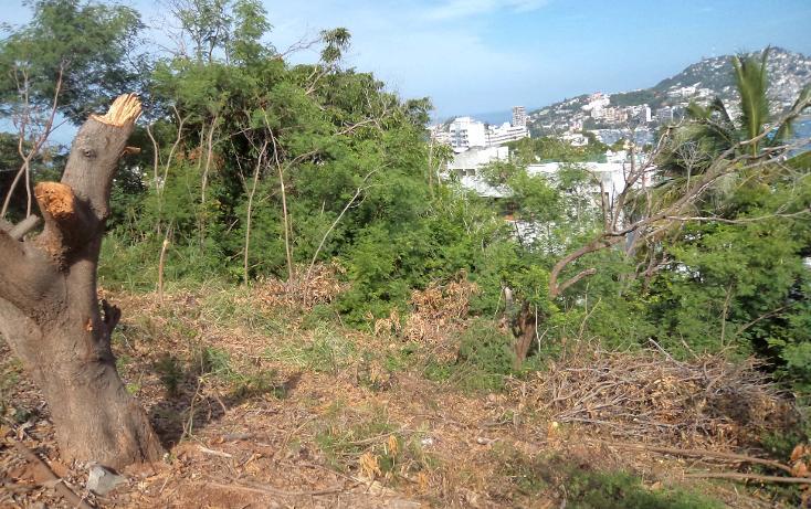 Foto de terreno habitacional en venta en  , las playas, acapulco de juárez, guerrero, 1331601 No. 08