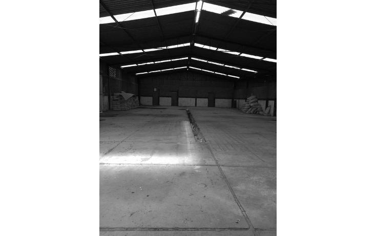 Foto de nave industrial en venta en  , las plazas, irapuato, guanajuato, 1678760 No. 03
