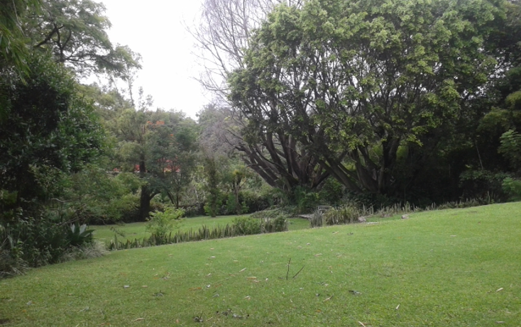 Foto de terreno habitacional en venta en  , las quintas, cuernavaca, morelos, 1071541 No. 06