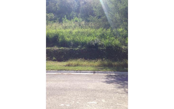 Foto de terreno habitacional en venta en  , las raíces, allende, nuevo león, 1518261 No. 03