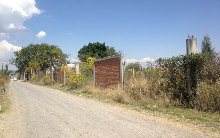 Foto de terreno comercial en venta en  , las torrecillas, ocotl?n, jalisco, 1718604 No. 03