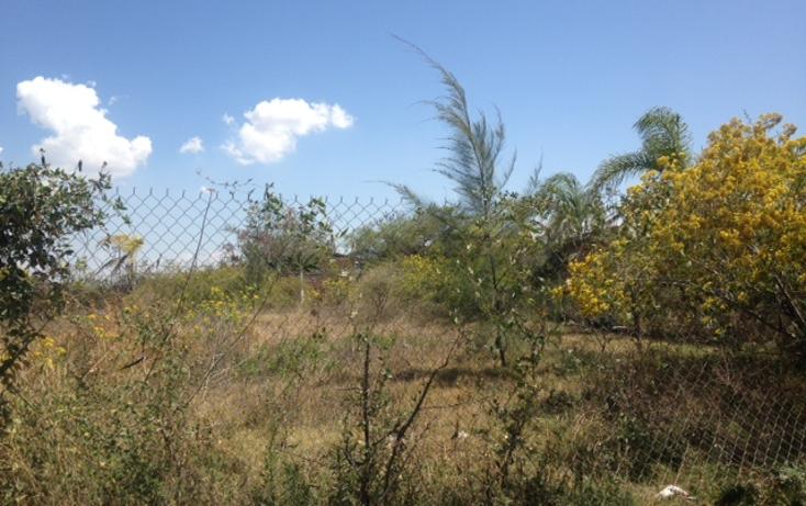 Foto de terreno comercial en venta en  , las torrecillas, ocotl?n, jalisco, 1718604 No. 04