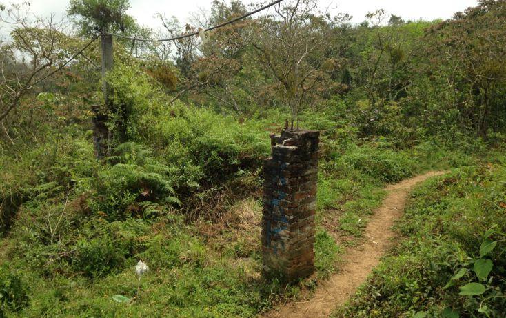 Foto de terreno habitacional en venta en, las torres, xalapa, veracruz, 1207089 no 12