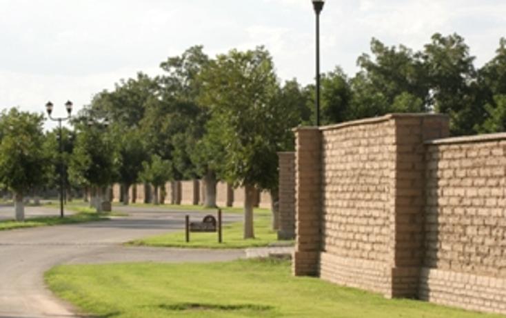 Foto de terreno habitacional en venta en  , las trojes, torre?n, coahuila de zaragoza, 1275819 No. 03