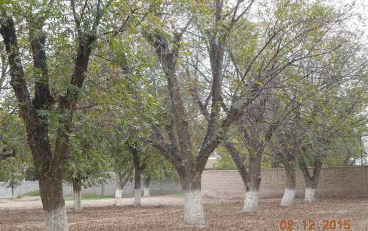 Foto de terreno habitacional en venta en  , las trojes, torreón, coahuila de zaragoza, 1427703 No. 05
