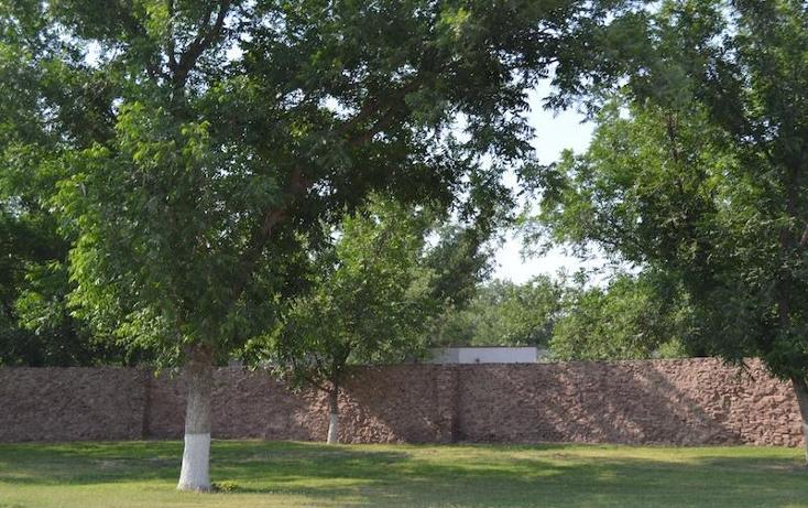 Foto de casa en venta en  , las trojes, torreón, coahuila de zaragoza, 2033184 No. 10