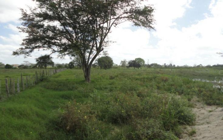 Foto de terreno comercial en renta en  , lázaro cárdenas 1a sección, centro, tabasco, 1550258 No. 02