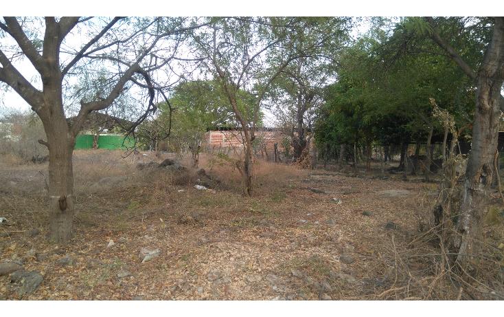 Foto de terreno habitacional en venta en  , lázaro cárdenas, apatzingán, michoacán de ocampo, 1773636 No. 03