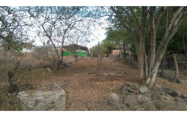 Foto de terreno habitacional en venta en  , lázaro cárdenas, apatzingán, michoacán de ocampo, 1773636 No. 04