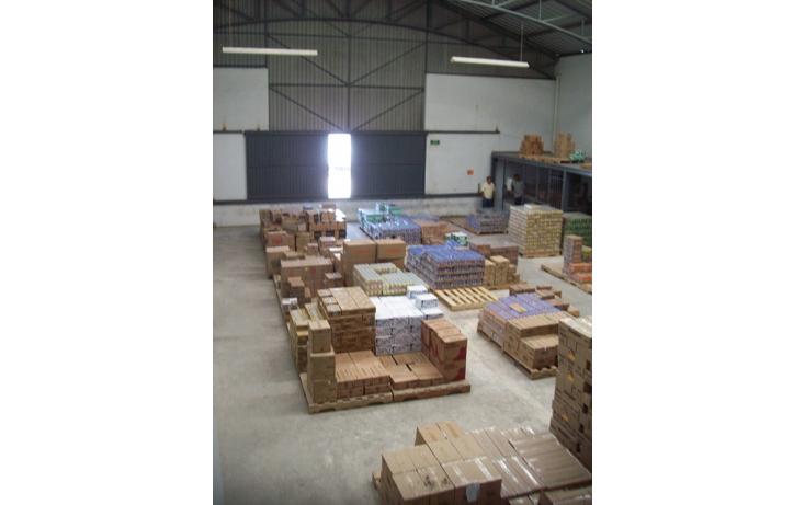 Foto de nave industrial en venta en  , l?zaro c?rdenas, campeche, campeche, 1175311 No. 02