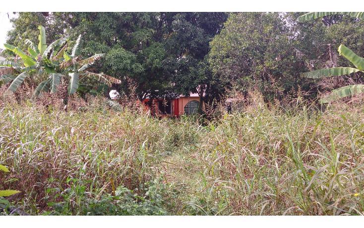 Foto de terreno habitacional en venta en  , lázaro cárdenas, campeche, campeche, 1283419 No. 01