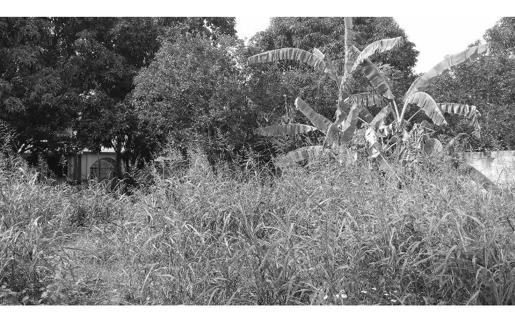 Foto de terreno habitacional en venta en  , lázaro cárdenas, campeche, campeche, 1283419 No. 02