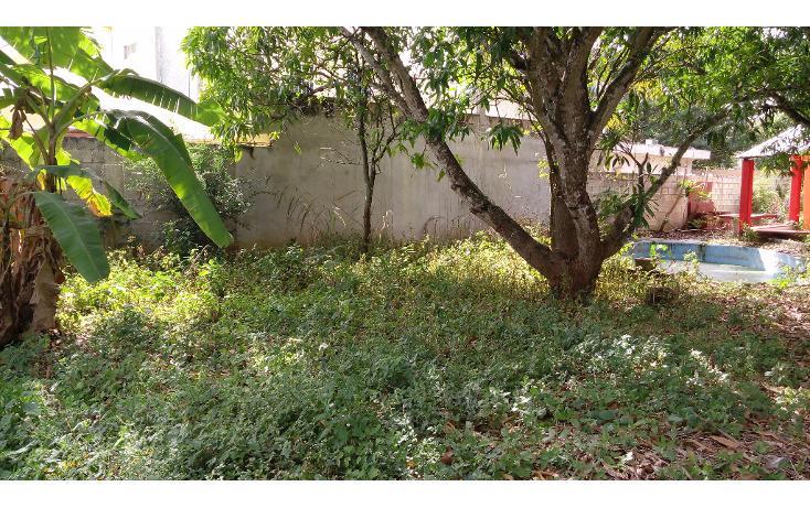 Foto de terreno habitacional en venta en  , lázaro cárdenas, campeche, campeche, 1283419 No. 03
