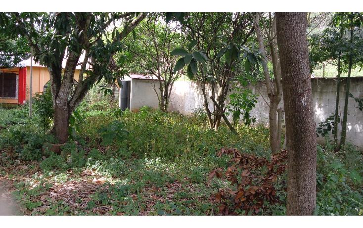 Foto de terreno habitacional en venta en  , lázaro cárdenas, campeche, campeche, 1283419 No. 04