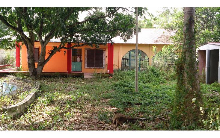 Foto de terreno habitacional en venta en  , lázaro cárdenas, campeche, campeche, 1283419 No. 06