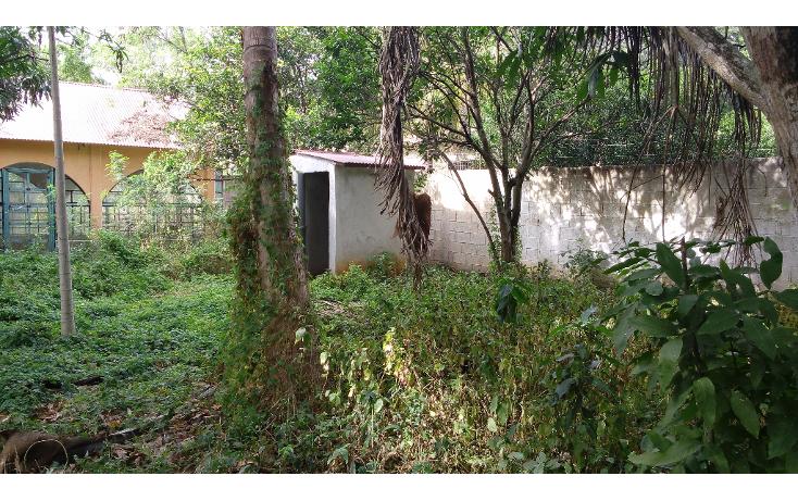 Foto de terreno habitacional en venta en  , lázaro cárdenas, campeche, campeche, 1283419 No. 07