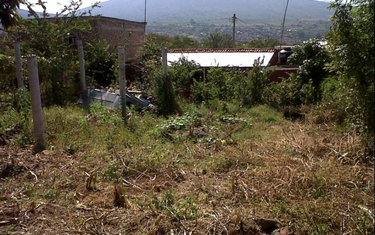Foto de terreno habitacional en venta en lázaro cárdenas, canindo, jacona, michoacán de ocampo, 501849 no 01