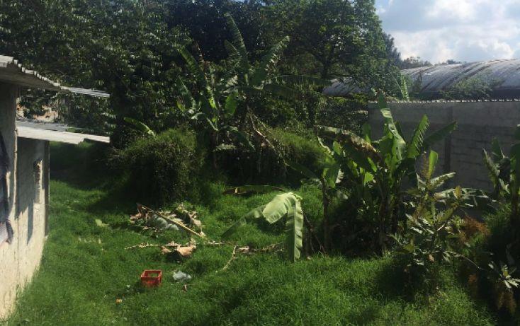 Foto de terreno habitacional en venta en, lázaro cárdenas, coatepec, veracruz, 1759762 no 04