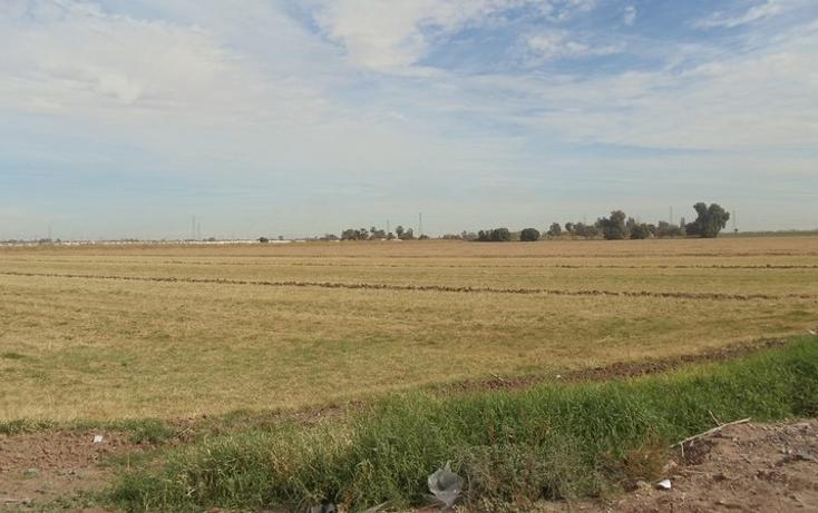 Foto de terreno comercial en renta en lazaro cardenas , gonzález ortega, mexicali, baja california, 1192105 No. 02